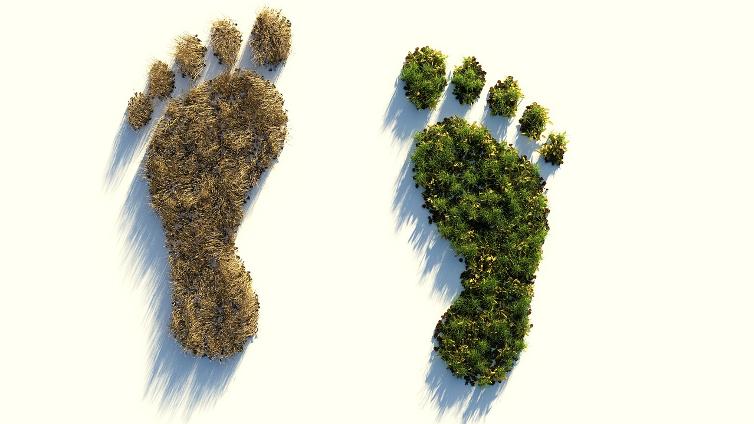 dématérialisation pour réduire empreinte écologique